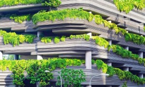 Entenda o sobre sustentabilidade