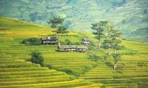 Conheça as propriedades do solo